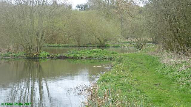 Three ponds