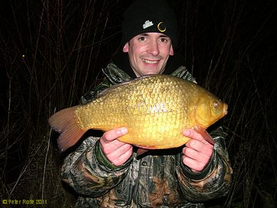A Marsh Farm Crucian Carp