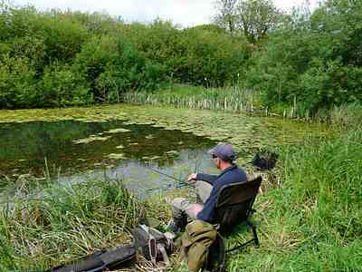 fishing for the crucian