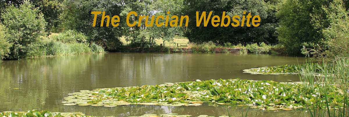 Peter Rolfe's Crucian Carp Website